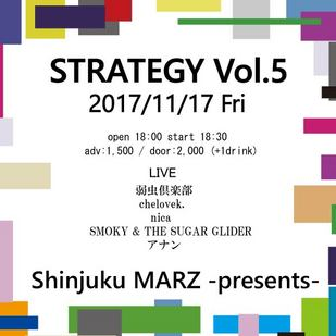 STRATEGY Vol.5