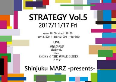 STRATEGY Vol.5